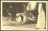 carte postale de Carnac 178