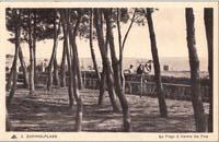 carte postale de Carnac 246