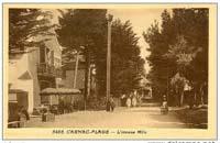 carte postale de Carnac 309