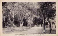 carte postale de Carnac 359