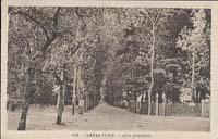 carte postale de Carnac 376