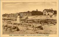 carte postale de Carnac 533
