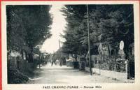 carte postale de Carnac 137