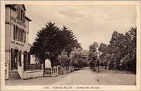 carte postale de Carnac 164