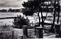 carte postale de Carnac 169