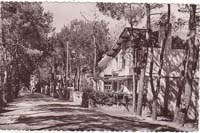 carte postale de Carnac 220