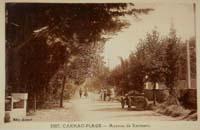 carte postale de Carnac 272