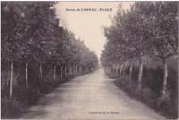 carte postale de Carnac 284
