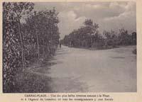 carte postale de Carnac 291
