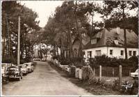 carte postale de Carnac 536
