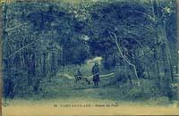 carte postale de Carnac 538