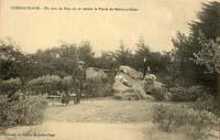 carte postale de Carnac 546