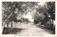 carte postale de Carnac 552