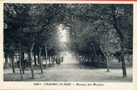 carte postale de Carnac 588