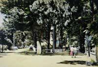 carte postale de Carnac 600
