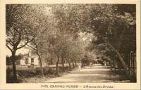 carte postale de Carnac 612