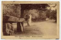 carte postale de Carnac 622
