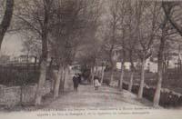 carte postale de Carnac 637