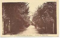 carte postale de Carnac 648