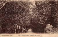 carte postale de Carnac 654